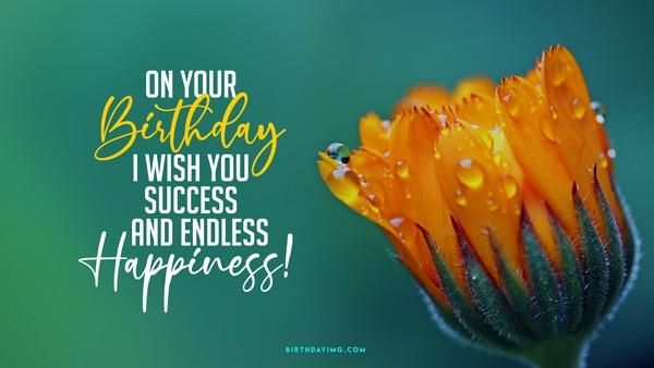 Free On your Birthday I wish you success and endless happiness! - birthdayimg.com