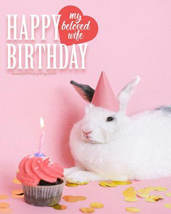 Free Cute Bunny Happy Birthday Image for Wife - birthdayimg.com