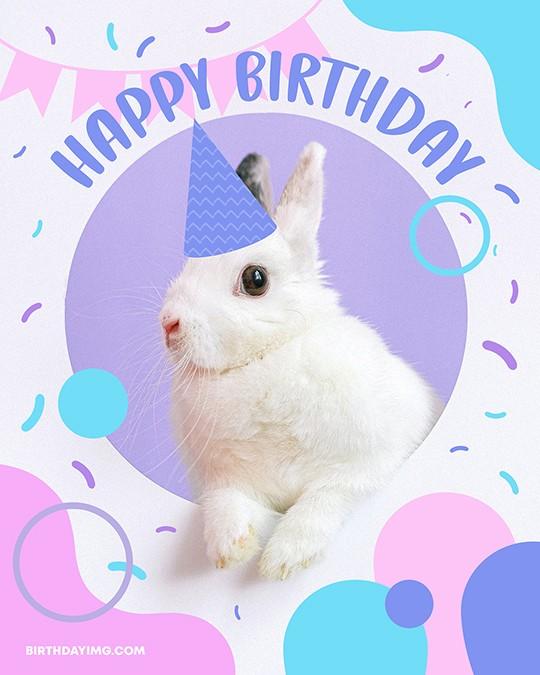 Free Happy Birthday Image with Cute Bunny - birthdayimg.com