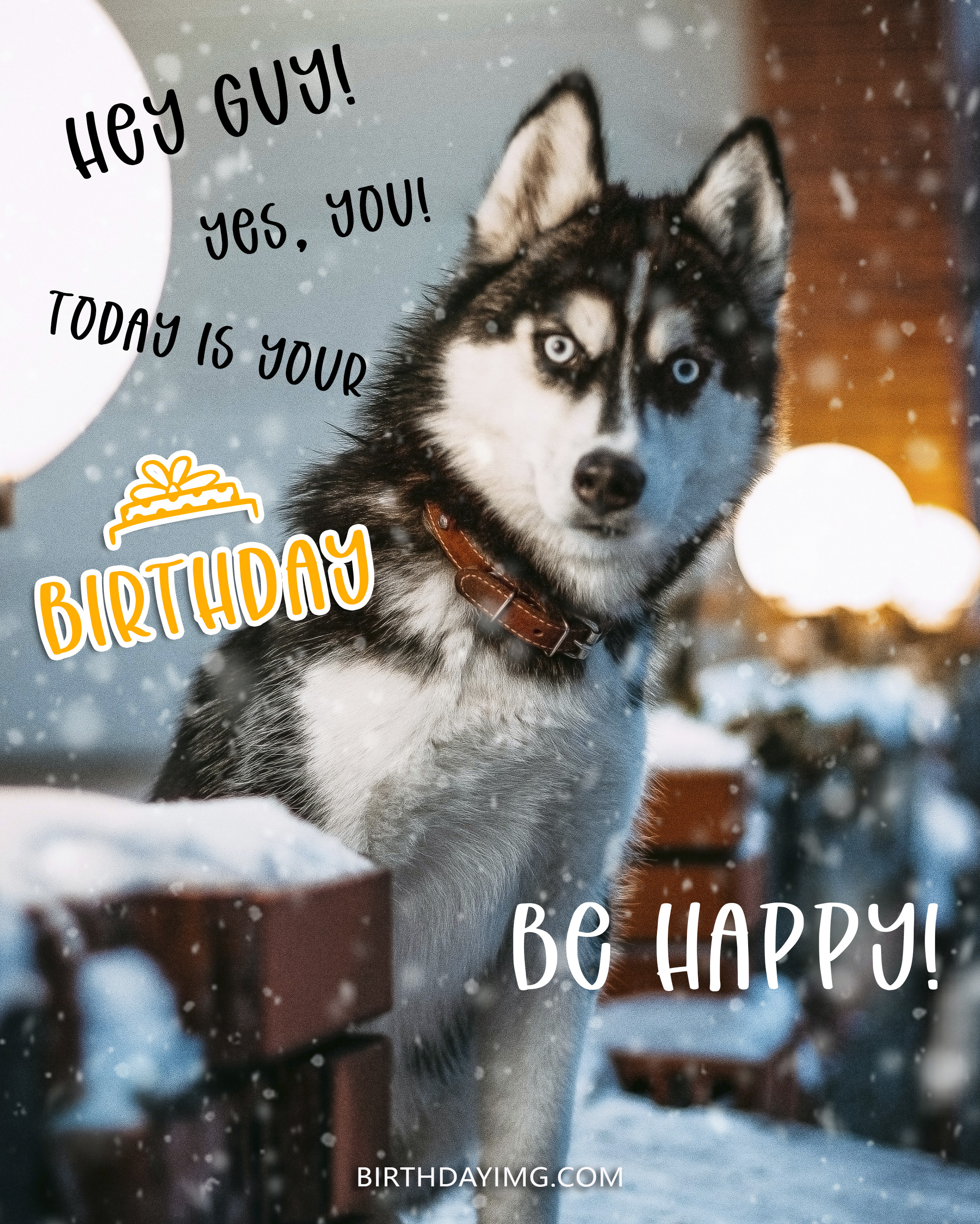 Free Happy Birthday Image For Guy With Funny Dog and Snow - birthdayimg.com