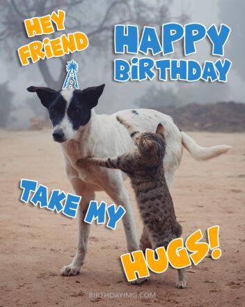 Free Friend Happy Birthday Image With Funny Cat And Dog - birthdayimg.com