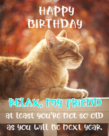 Free Friend Happy Birthday Image With Funny Cat - birthdayimg.com