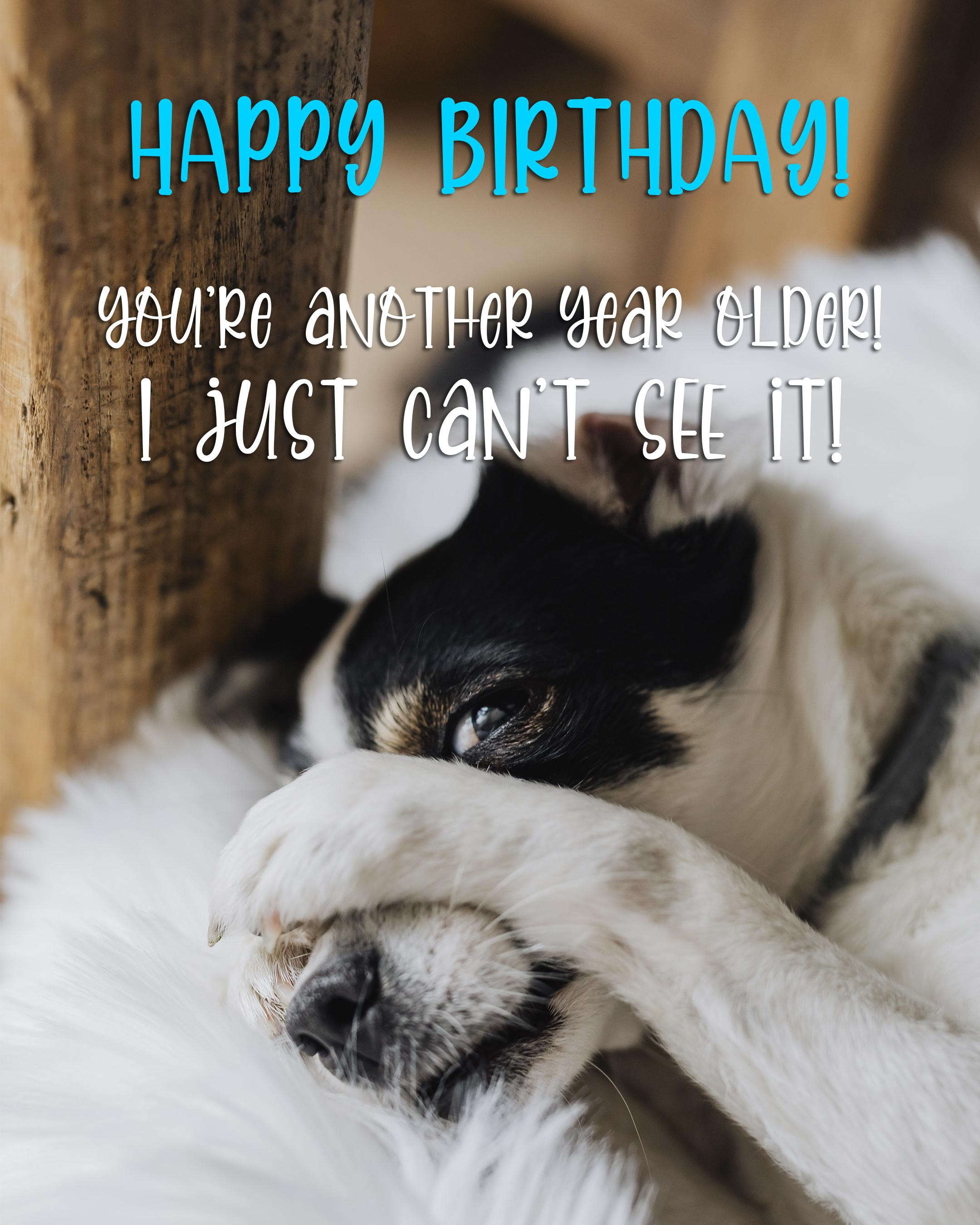 Free Happy birthday Image For Him (Man) With Funny Dog - birthdayimg.com