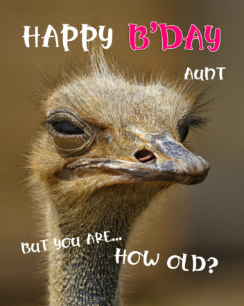 Free Funny Happy Birthday Image For Aunt With Ostrich - birthdayimg.com