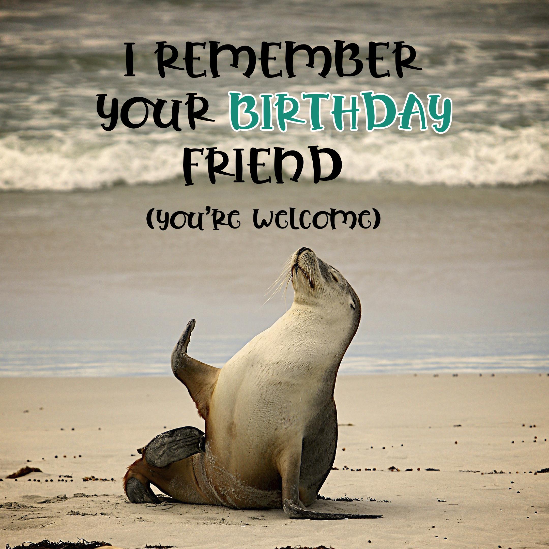 Free Friend Happy Birthday Image With Funny Seal - birthdayimg.com