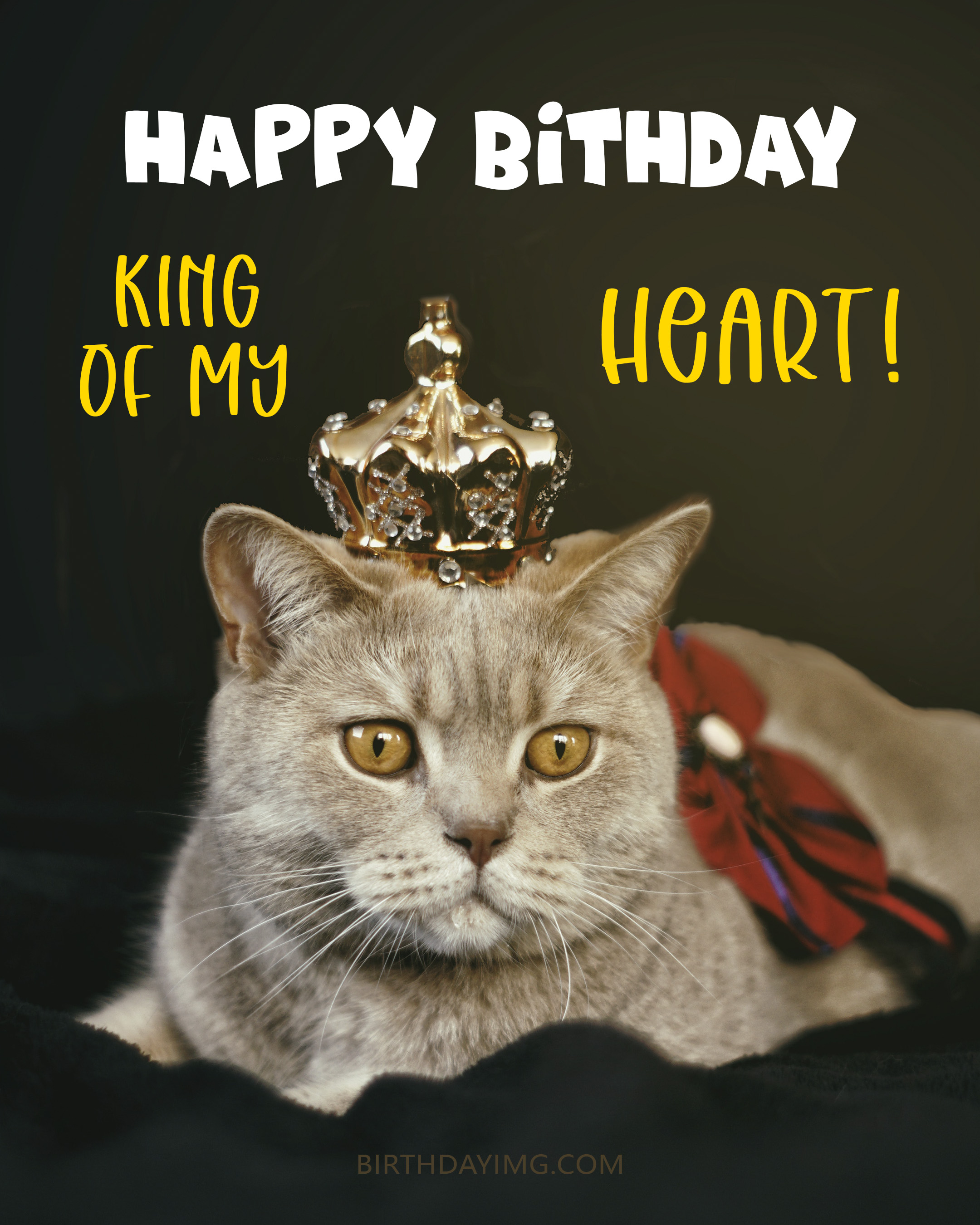 Free Funny Happy Birthday Image For Husband With Cat with Crown - birthdayimg.com
