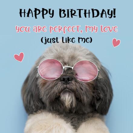 Free Funny Happy Birthday Image With Love - birthdayimg.com
