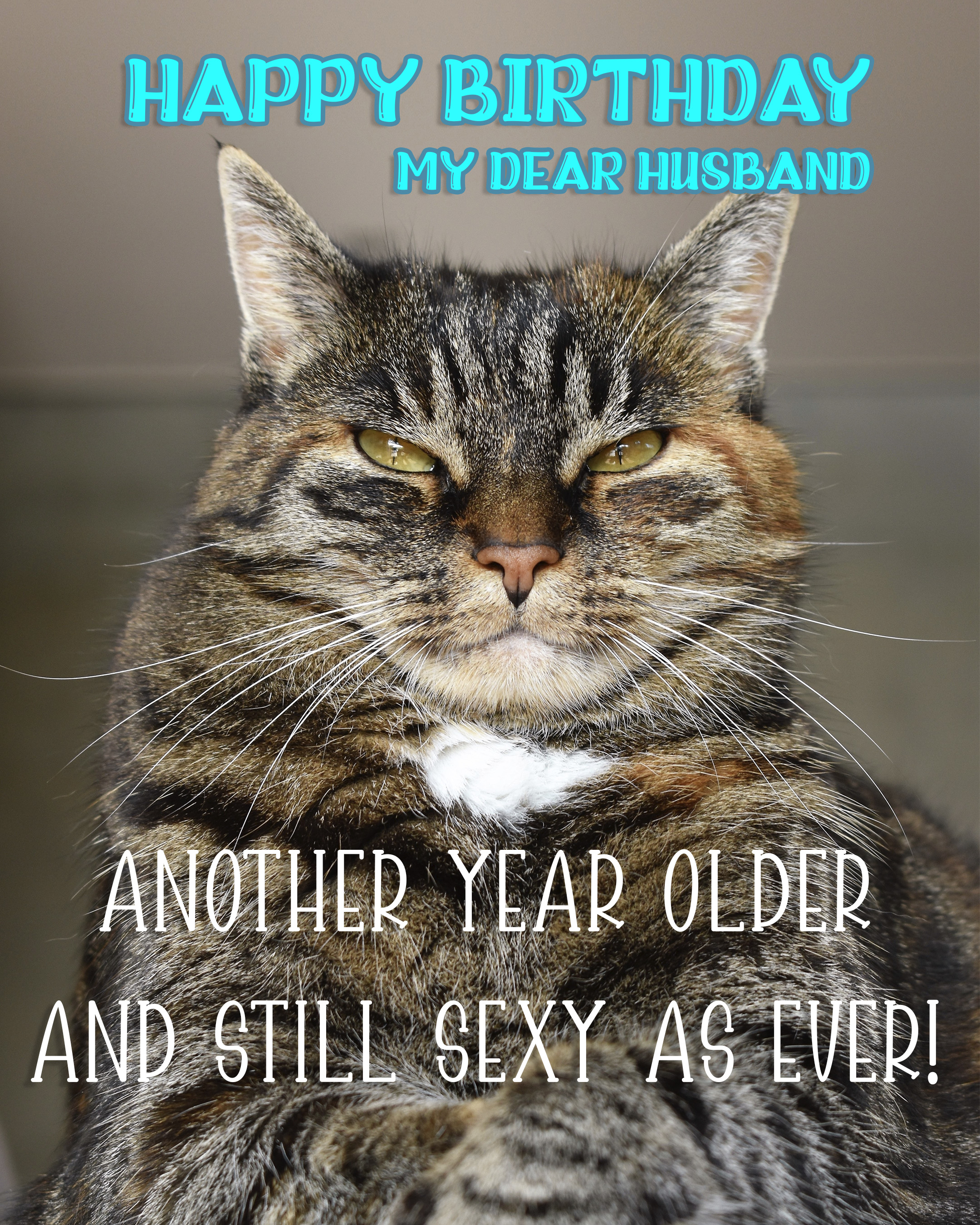 Free Funny Happy Birthday Image For Husband With Cat - birthdayimg.com