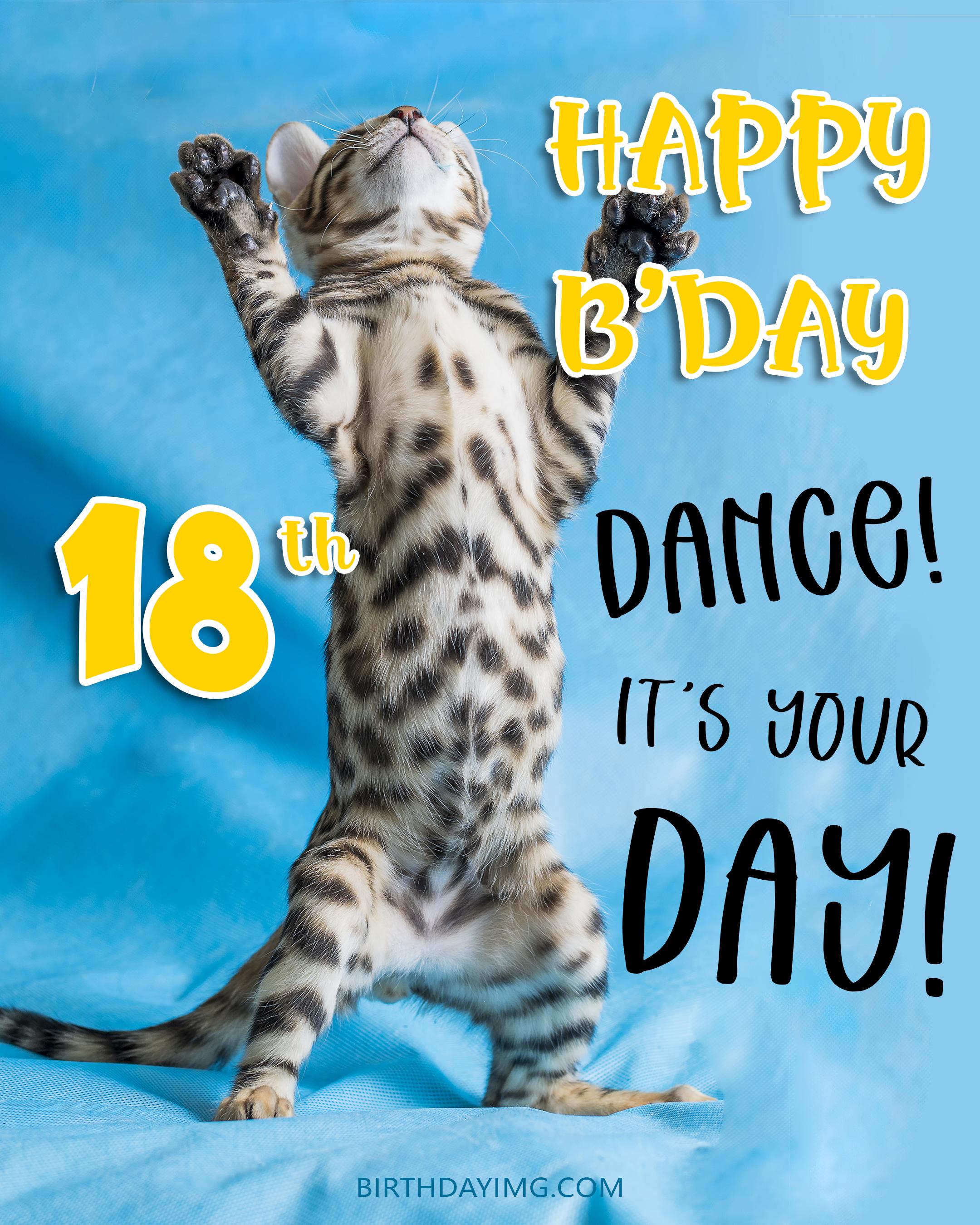 Free 18th Years Happy Birthday Image With Funny Cat - birthdayimg.com