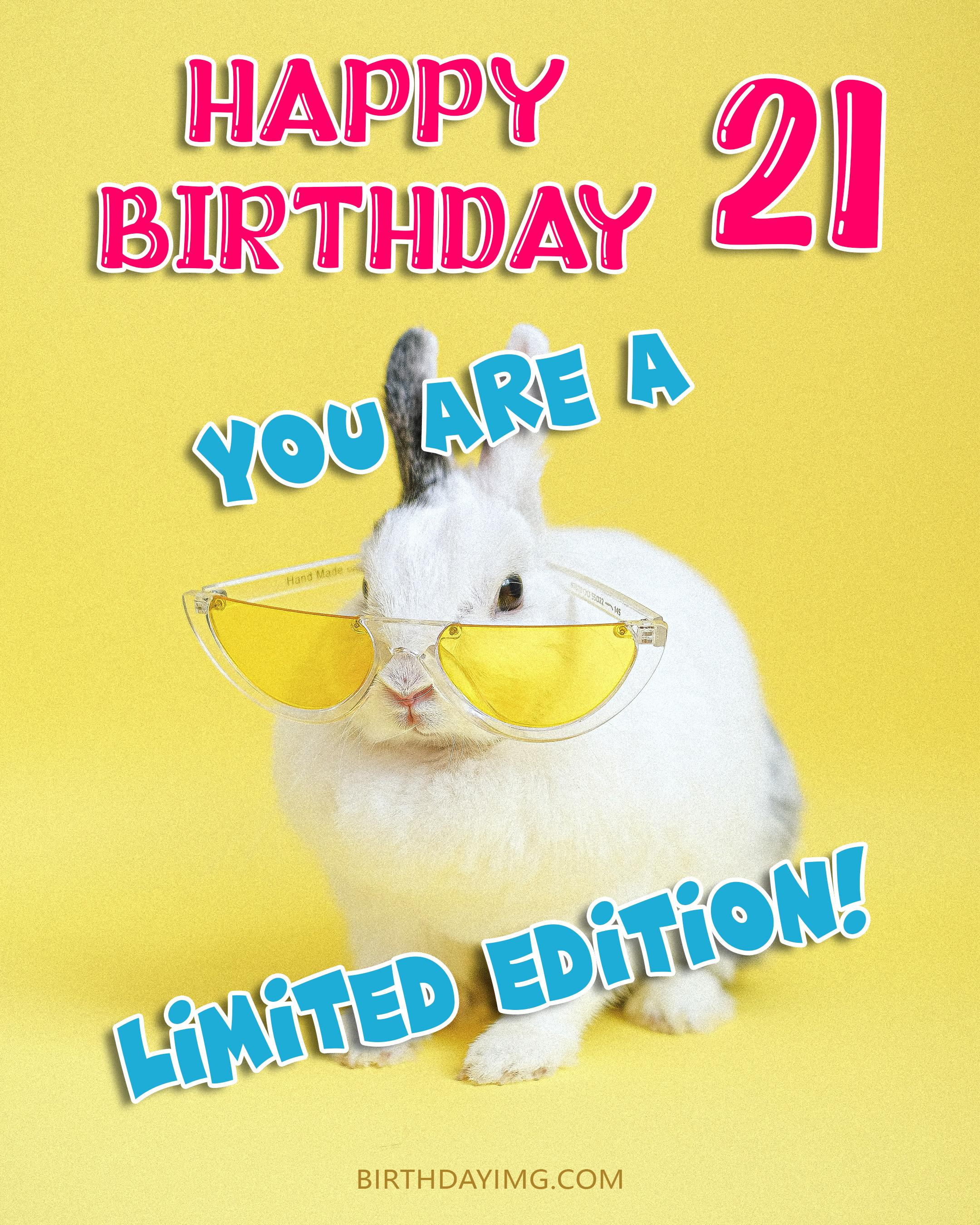 Free 21th Years Happy Birthday Image With Cute Rabbit - birthdayimg.com