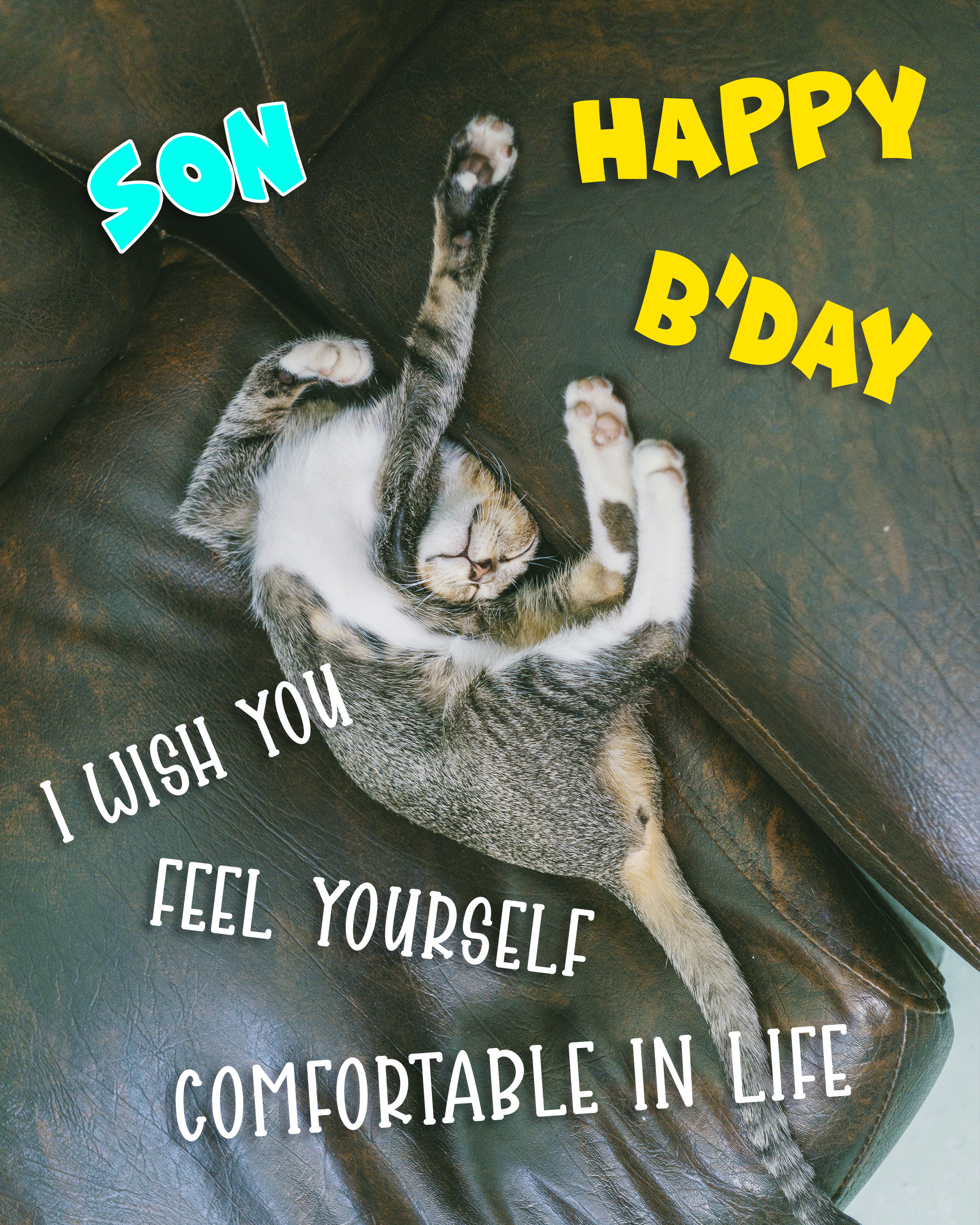 Free Funny Happy Birthday Image For Son With Cat - birthdayimg.com