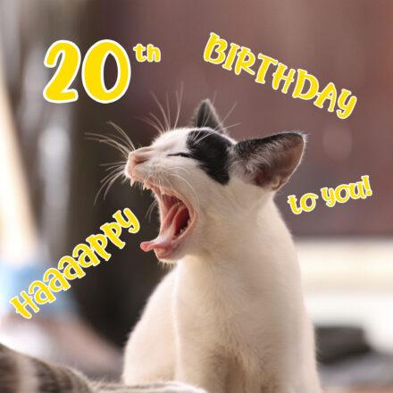Free 20th Years Happy Birthday Image With Funny Cat - birthdayimg.com