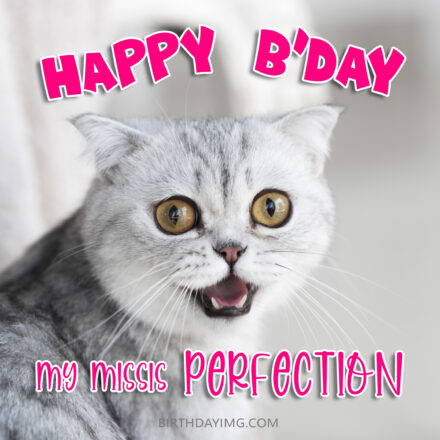 Free Funny Happy Birthday Image For Wife With Cute Cat - birthdayimg.com
