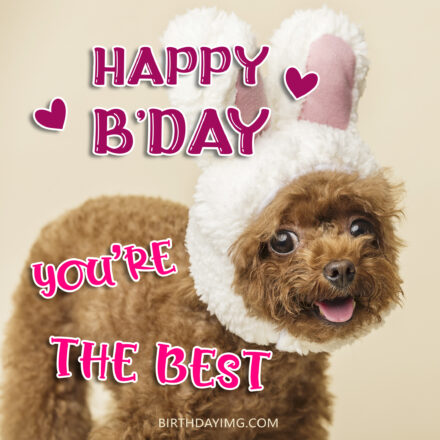 Free Funny Happy Birthday Image For Her (Woman) With Cute Dog - birthdayimg.com