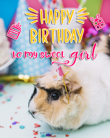 Free Happy Birthday Image For Girl With Cute Guinea Pig - birthdayimg.com